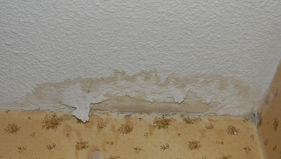 My Roof Is Leaking! Can I DIY or Should I Call a Pro?