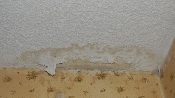 Drywall_splotch shows water damage and roof leak.jpg