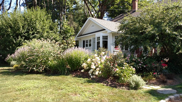 spring flowers and spring roof replacement on home