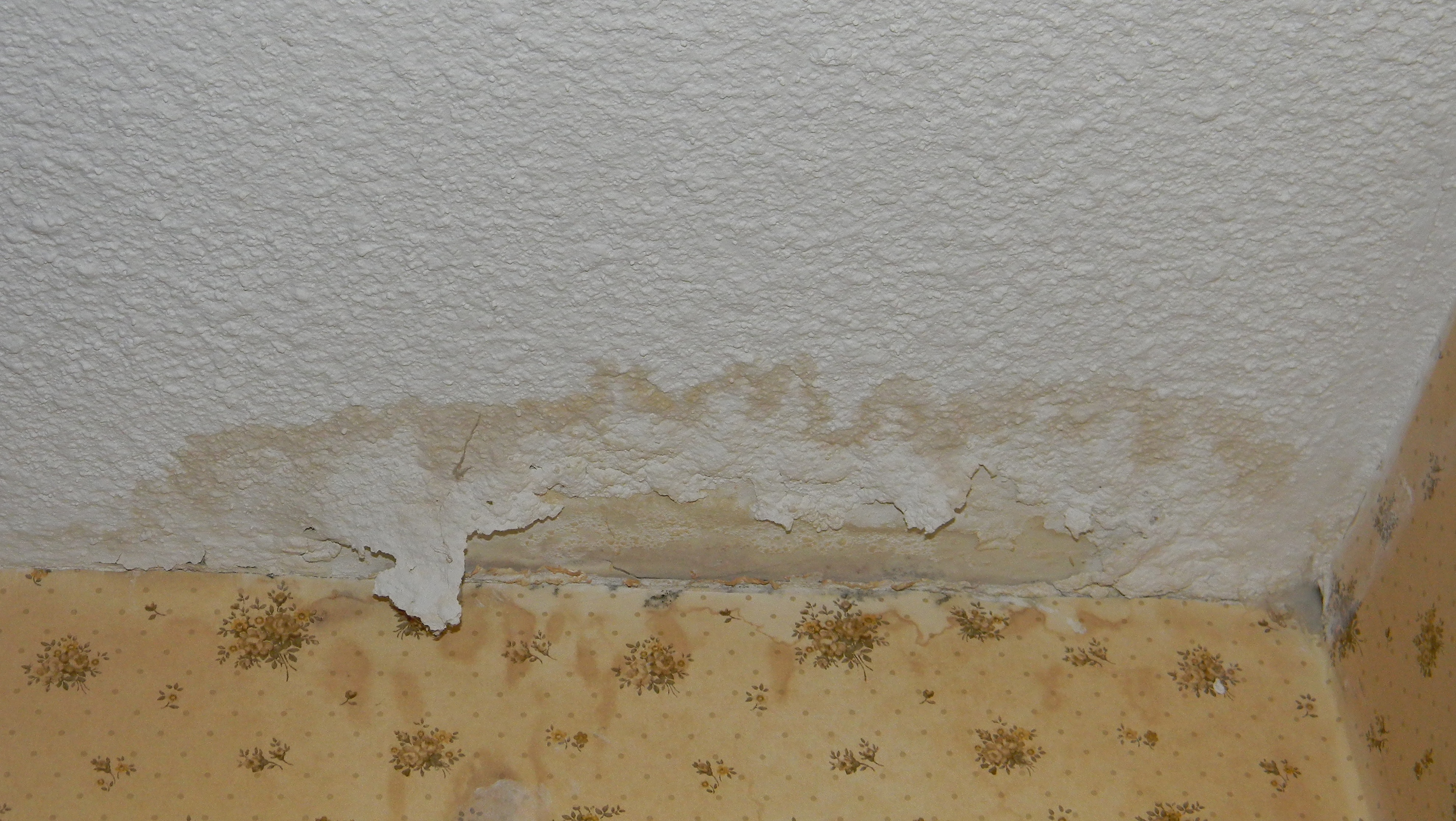 Drywall_splotch.jpg