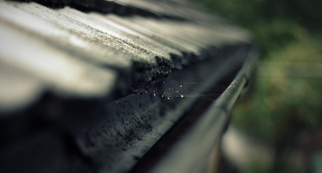 gutter-with-spiderweb
