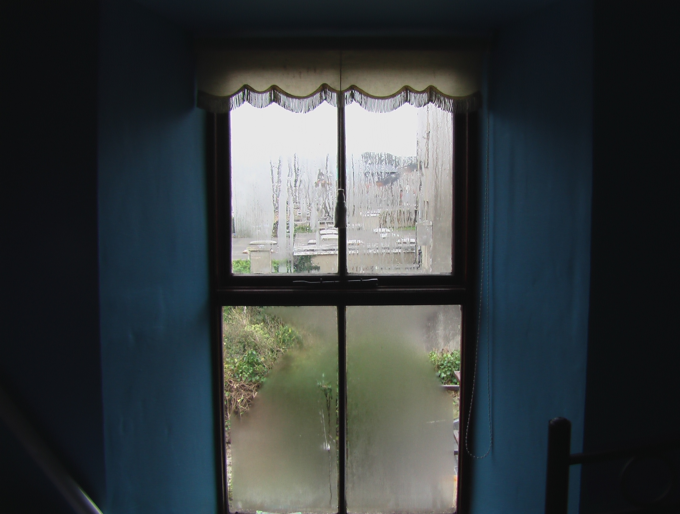 condensation window.jpg